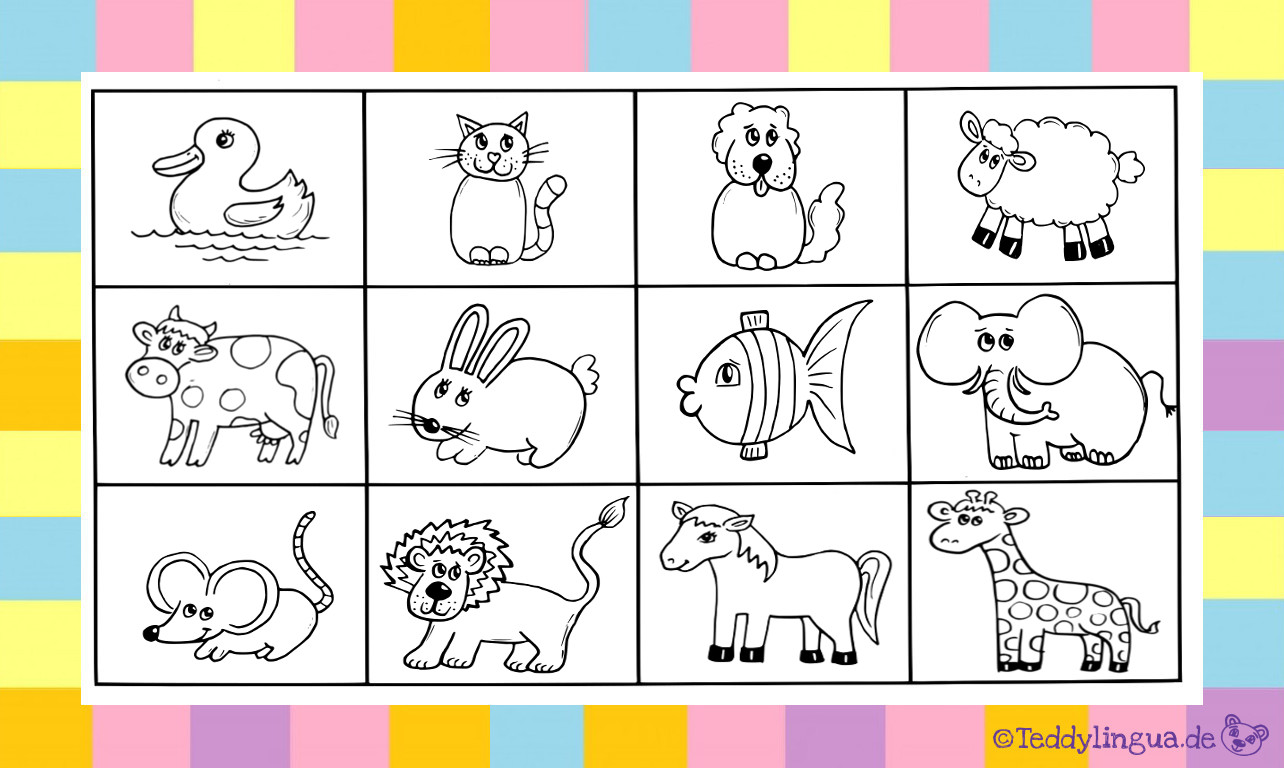 Zootiere kennenlernen